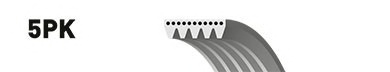Ремень генератора BMW 5 (E39) 7 (E38) 2.5TD Kia Cerato 1.5-1.6CRDI 05-