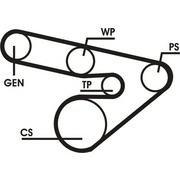 Ремінь генератора 6PK1800 Combo 1.2-1.4i 2.2DTI MOVANO
